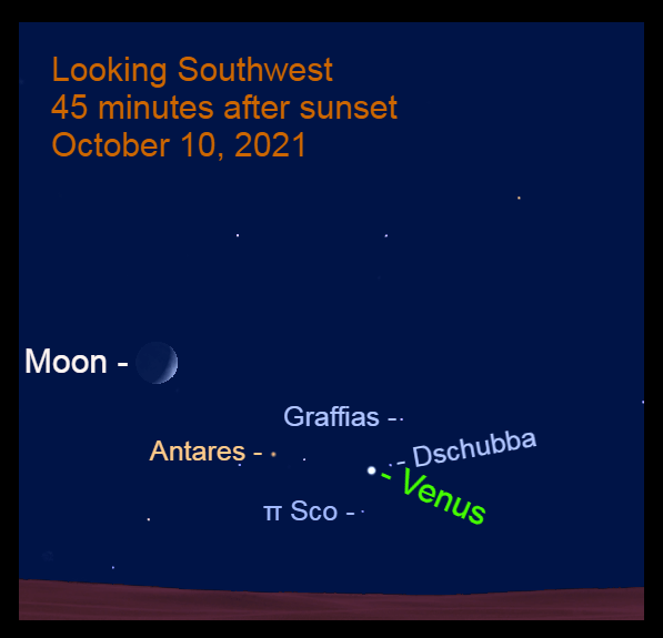 2021, October 10: The crescent is moon is to the upper left of Antares, while Venus is to the lower left of Dschubba.