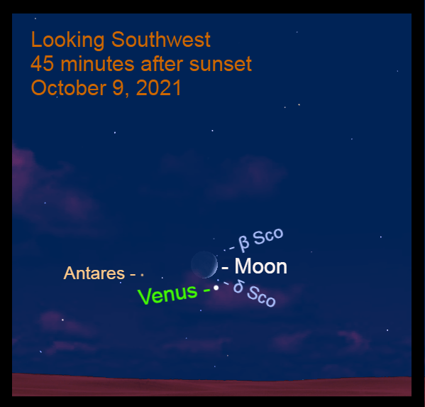 2021, October 9: Forty-five minutes after sunset, look for brilliant Venus, crescent moon, and the Scorpion's head low in the southwest.