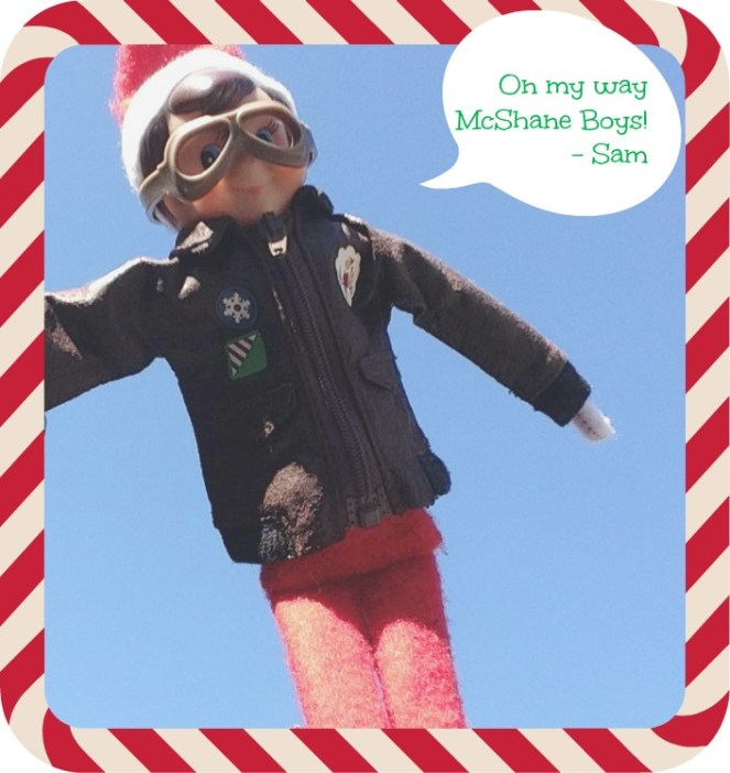 Sam the Elf postcard