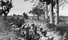 Troops dug in at Chocolate Hill, Suvla Bay