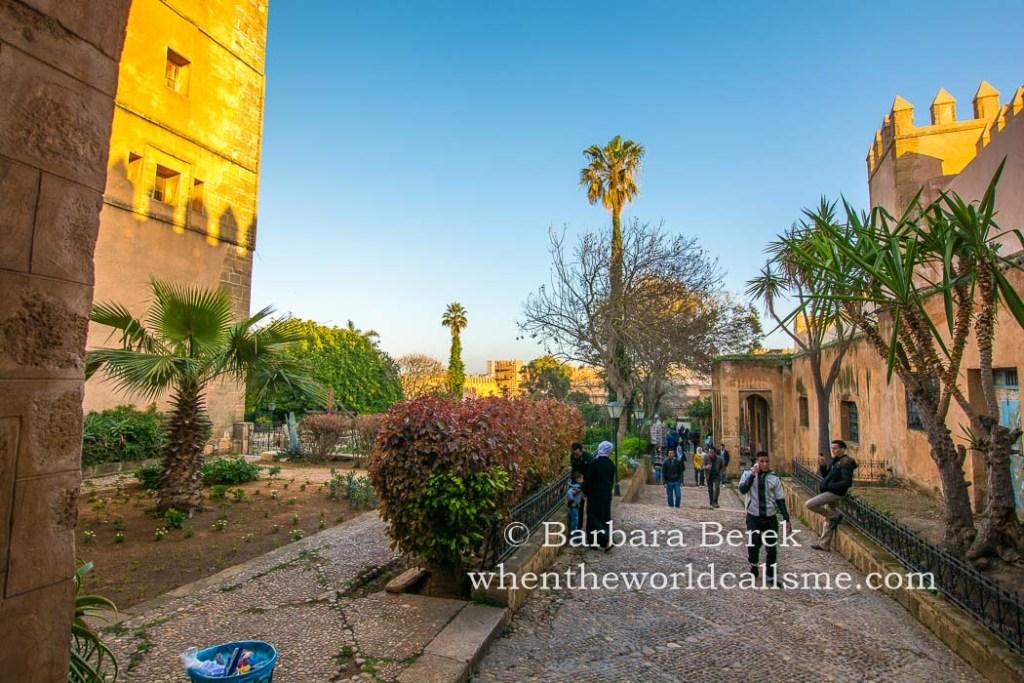 Rabat DSC 3902 mini