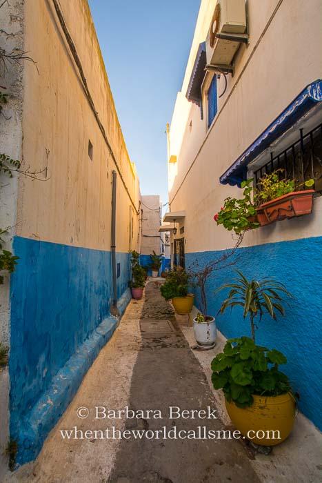 Rabat DSC 3941 mini