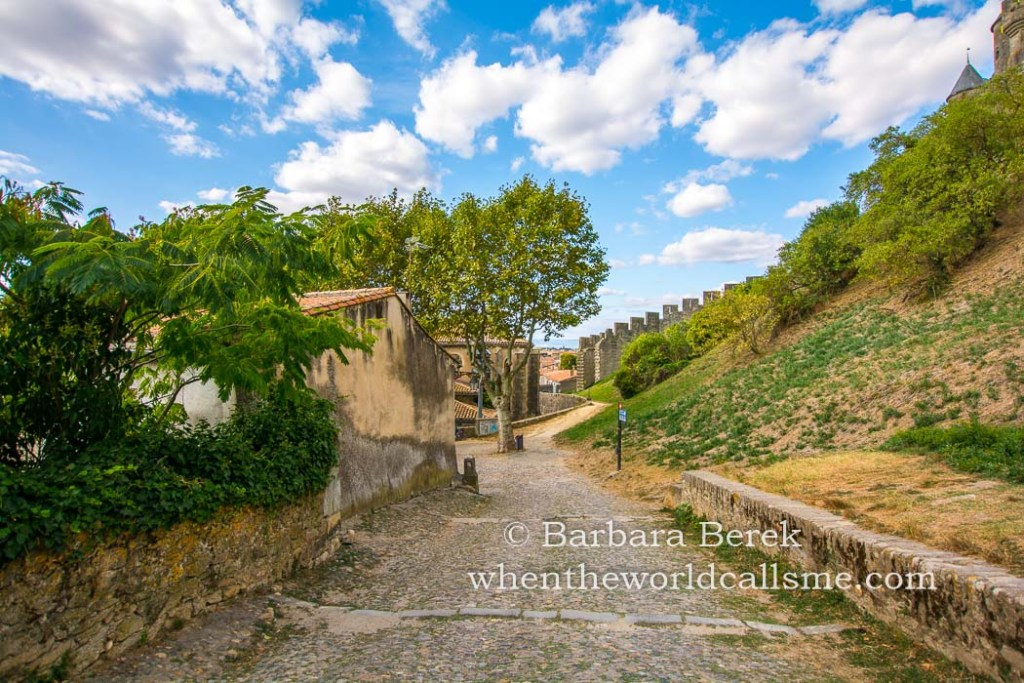 Carcassonne DSC 5978 mini