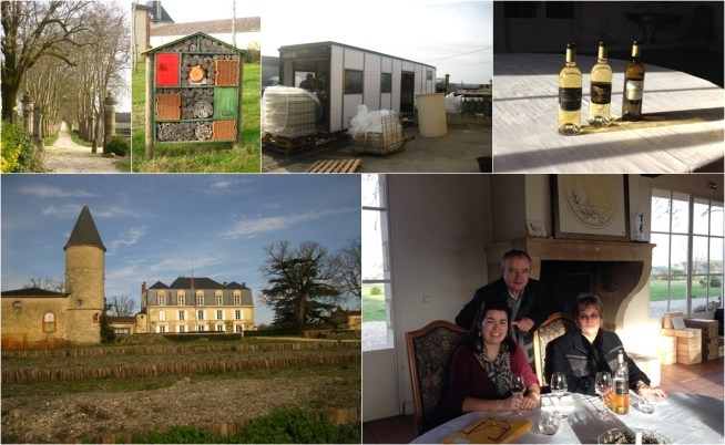We wrap up at Château Guiraud in Sauternes, an area known for sweet white wines. After a long drive in from the road, human visitors are greeted by the sight of the château, and insect visitors get a hotel of their own. The bottling truck is set up and filling. We finish with a tasting - my parrain, his wife, and me.
