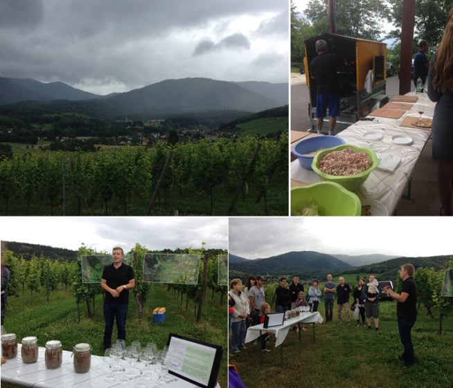 Oh man.. is that more rain coming? Now this is terroir: we get a lesson on soil (and climate) as well as a tasting of the Robert Roth Riesling from Mittelbourg. Back at the winery, the tartes flambées keep coming.