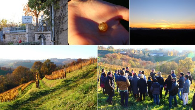 Visit to Clos Lapeyre: a closer look a Gros (not gross!) Manseng berry. Terraced hillsides and a lesson on the Jurançon. A gorgeous sunset over the Pyrenées.