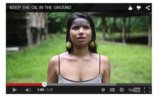 Activist Nina Gualinga