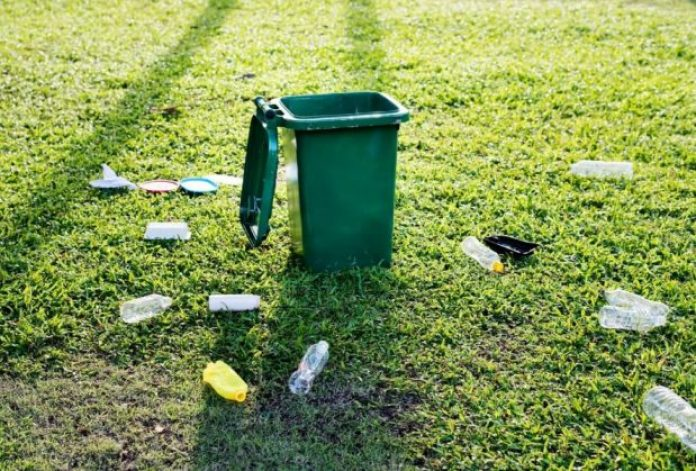 Recycling household rubbish can save trees and more