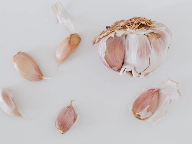 Kyolic aged garlic supplement benefits