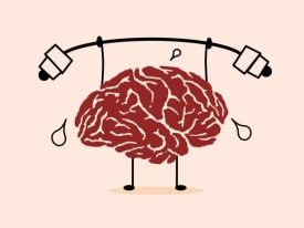 Healthy brain and body