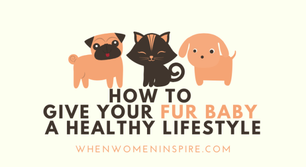 Pet healthy lifestyle tips