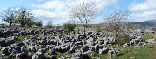 Limestone Pavements