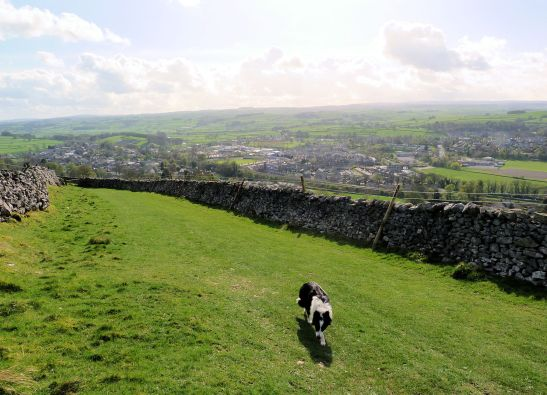 Overlooking Settle