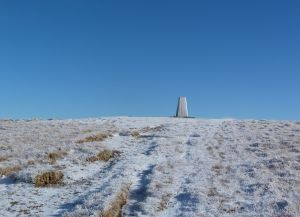 The Calf summit trig