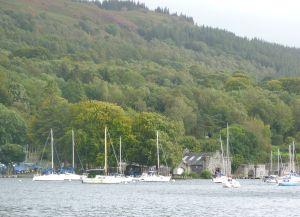 Marina at Lakeside
