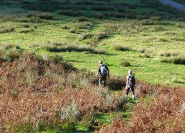 Approaching Gatesgarth