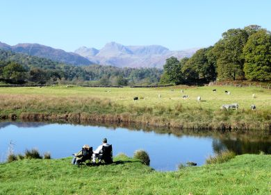 Langdales from Elter Water