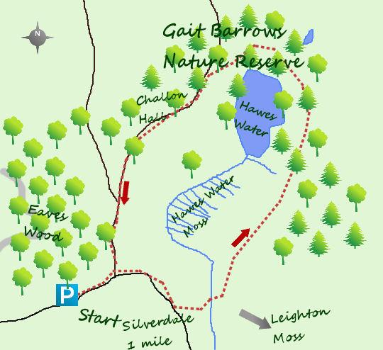 Gait Barrows Nature Reserve