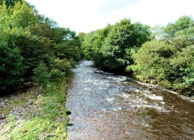 River Wenning