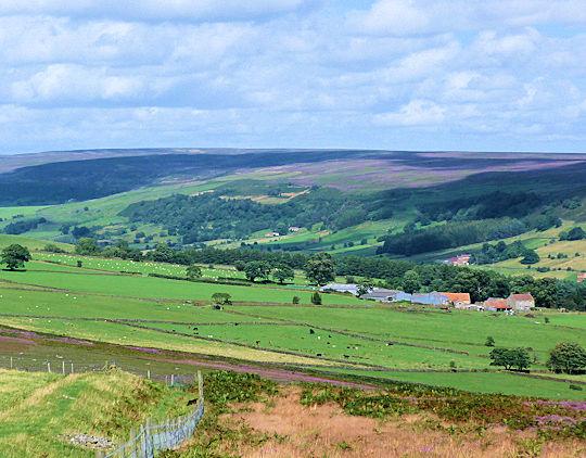 Bilsdale from Easterside Hill