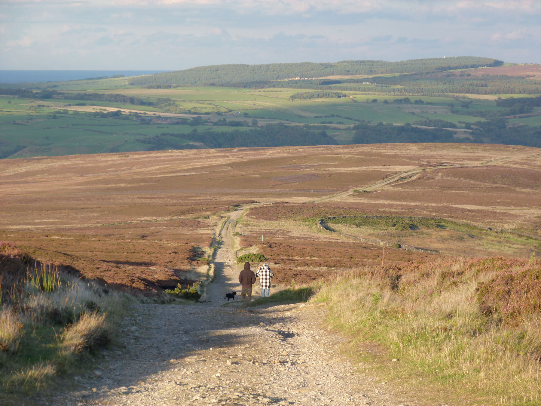 Glaisdale Rigg in the late sun