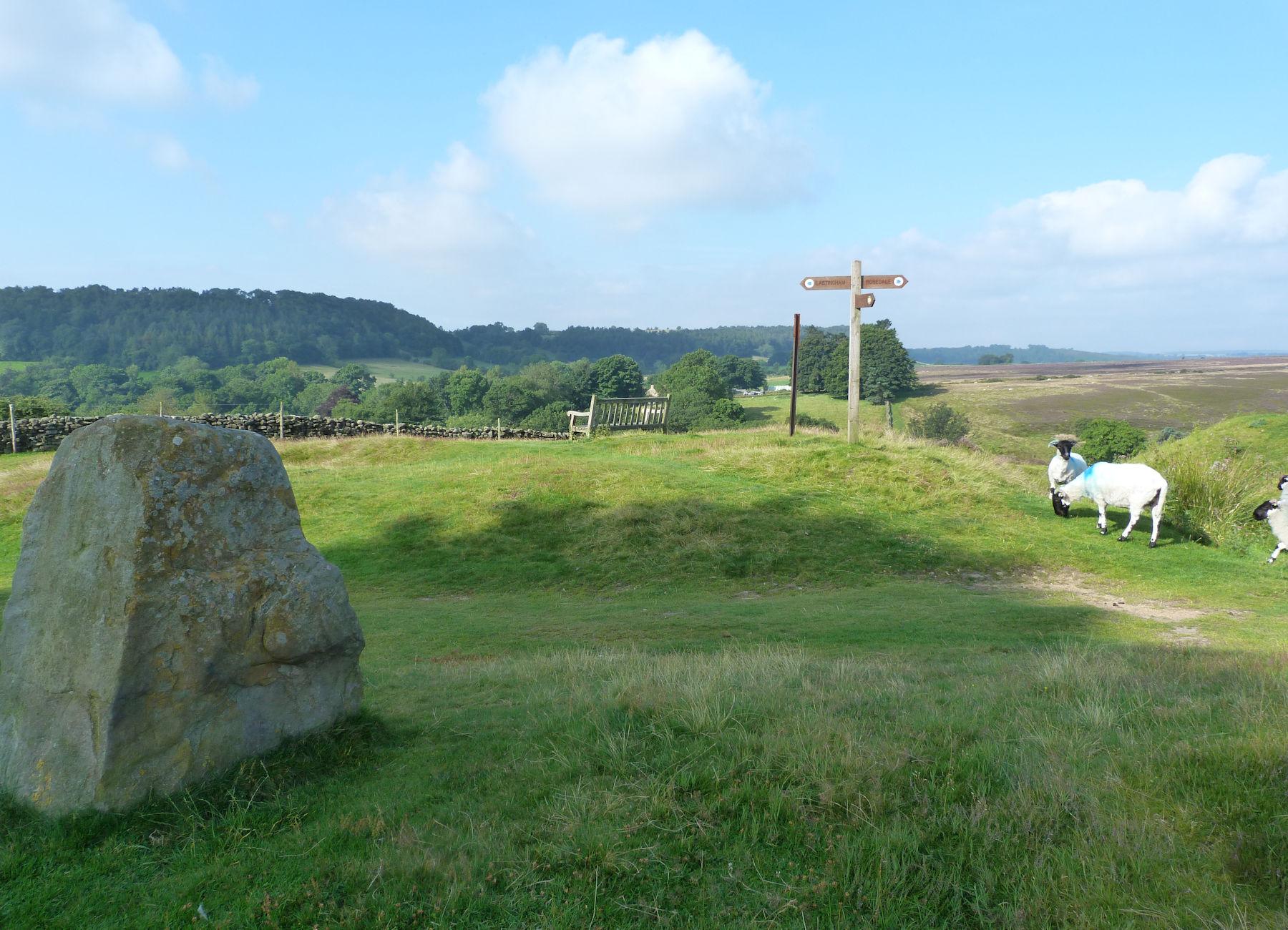 Moors near Lastingham