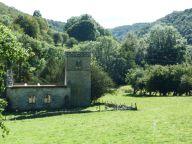 Ruins near Levisham