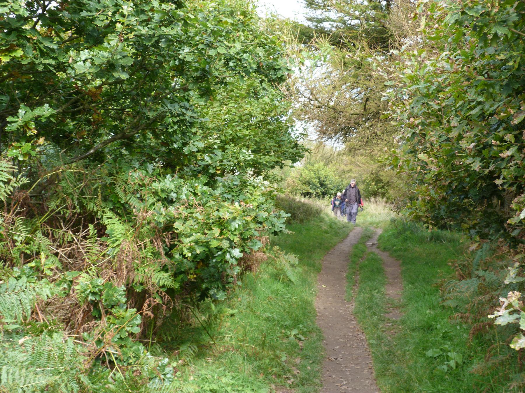 Walking near Sutton Bank