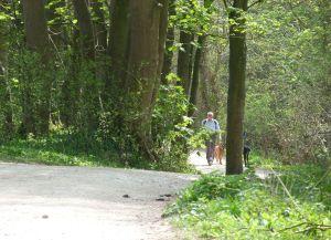 Terrington Moor