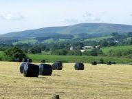 Broadhead Farm