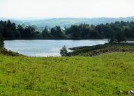 Borrans Reservoir