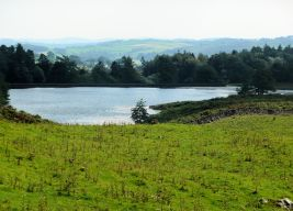 Borrans Reservoir