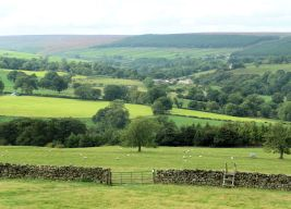 Lower Wensleydale