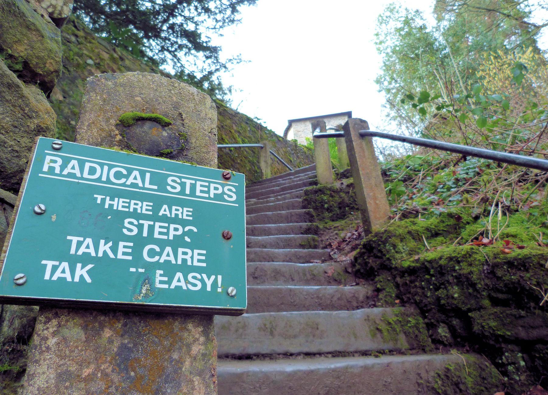 The Radical Steps