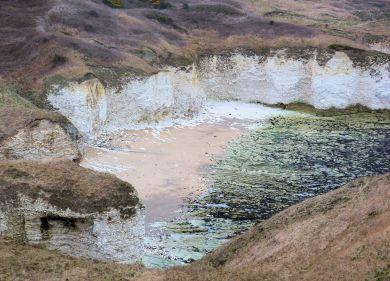 Cliffs at Flamborough Head
