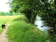 The Lower Nidd