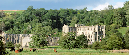 Late Light at Rievaulx Abbey