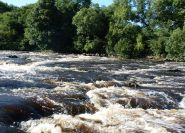 Lower Aysgarth Falls