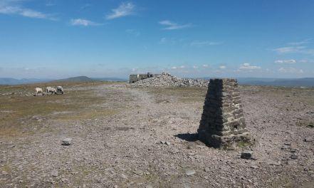 Ingleborough summit plateau
