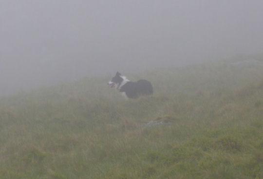 mist on scafell