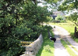 Harbour Lodge