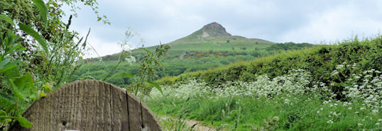 Classic Roseberry Topping