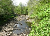 Upper Swale
