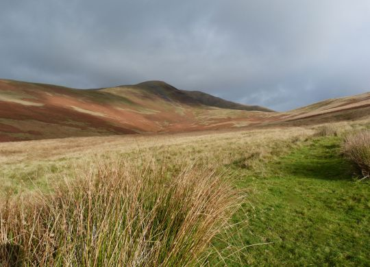 Fell Head from Beck House