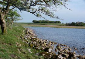 Malham Tarn eastern shore
