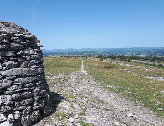Whitbarrow summit looking north