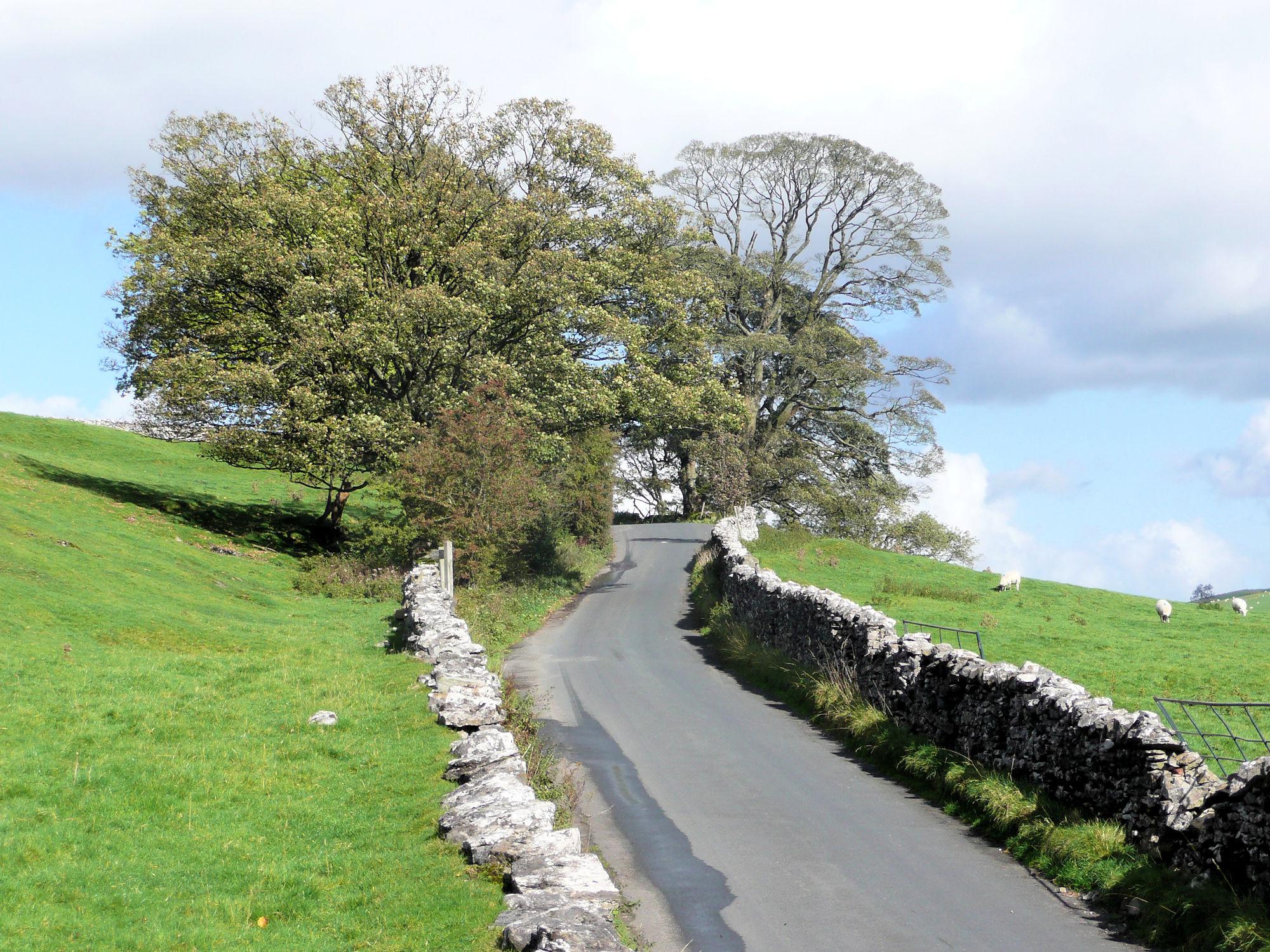 Quiet Lane near Slaidburn