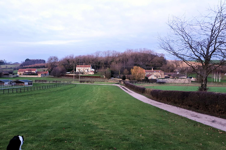 Lime Kilns Farm near Burton Leonard