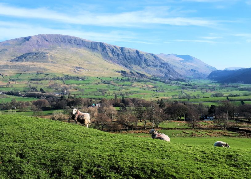 Looking towards St Johns in the Vale