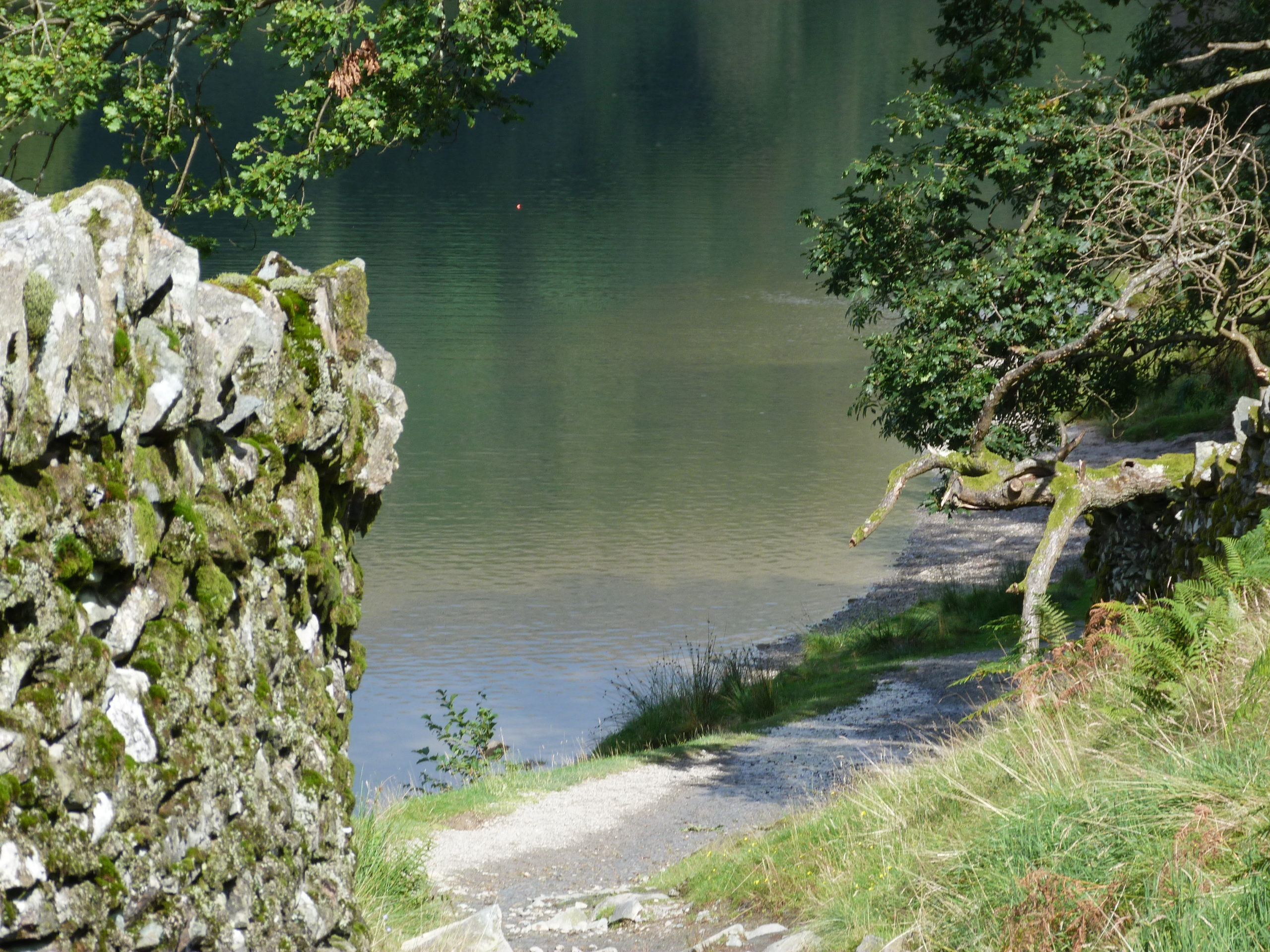 Shores of Rydal Water
